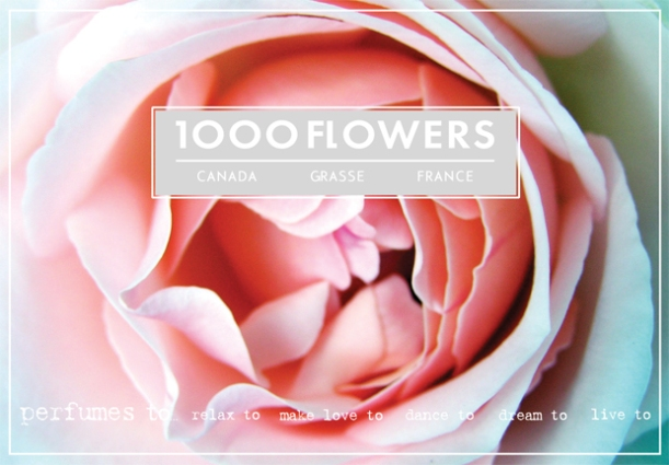1000 Flowers- Perfumes to relax to